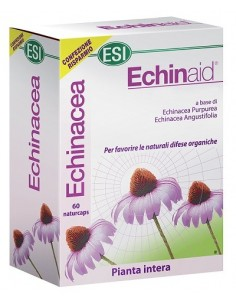 Echinaid 60 Capsule